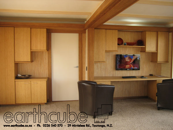 CONTAINER-HOME-EARTHCUBE-01